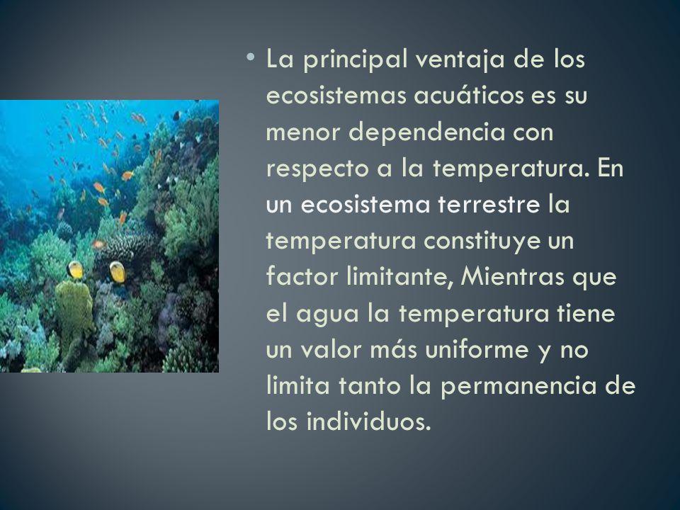 La principal ventaja de los ecosistemas acuáticos es su menor dependencia con respecto a la temperatura. En un ecosistema terrestre la temperatura con