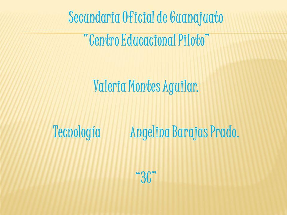 Secundaria Oficial de Guanajuato