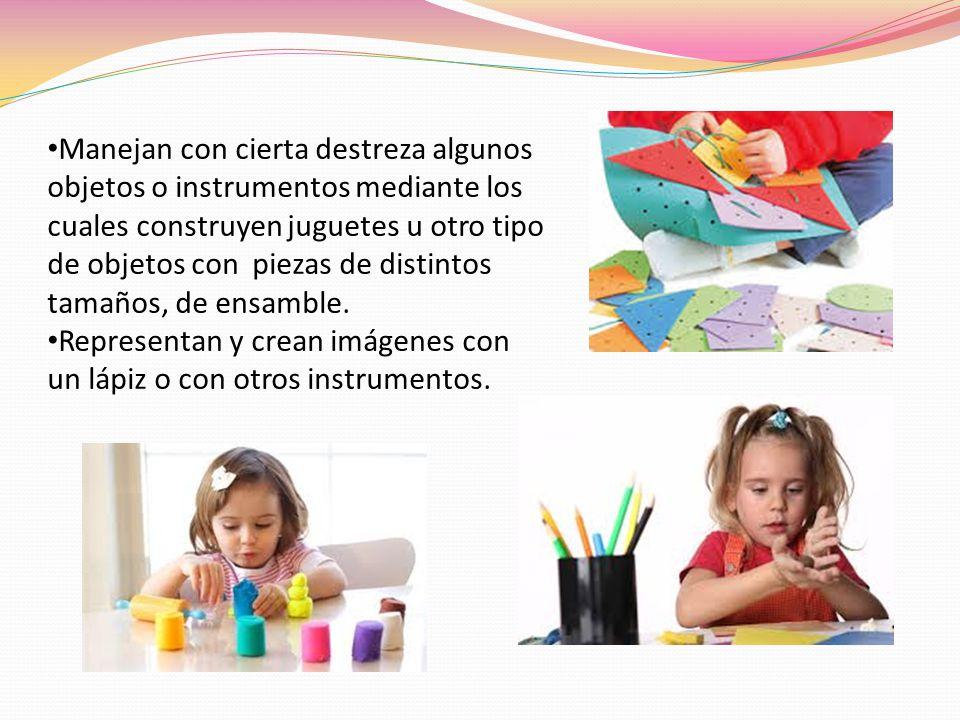 Manejan con cierta destreza algunos objetos o instrumentos mediante los cuales construyen juguetes u otro tipo de objetos con piezas de distintos tama