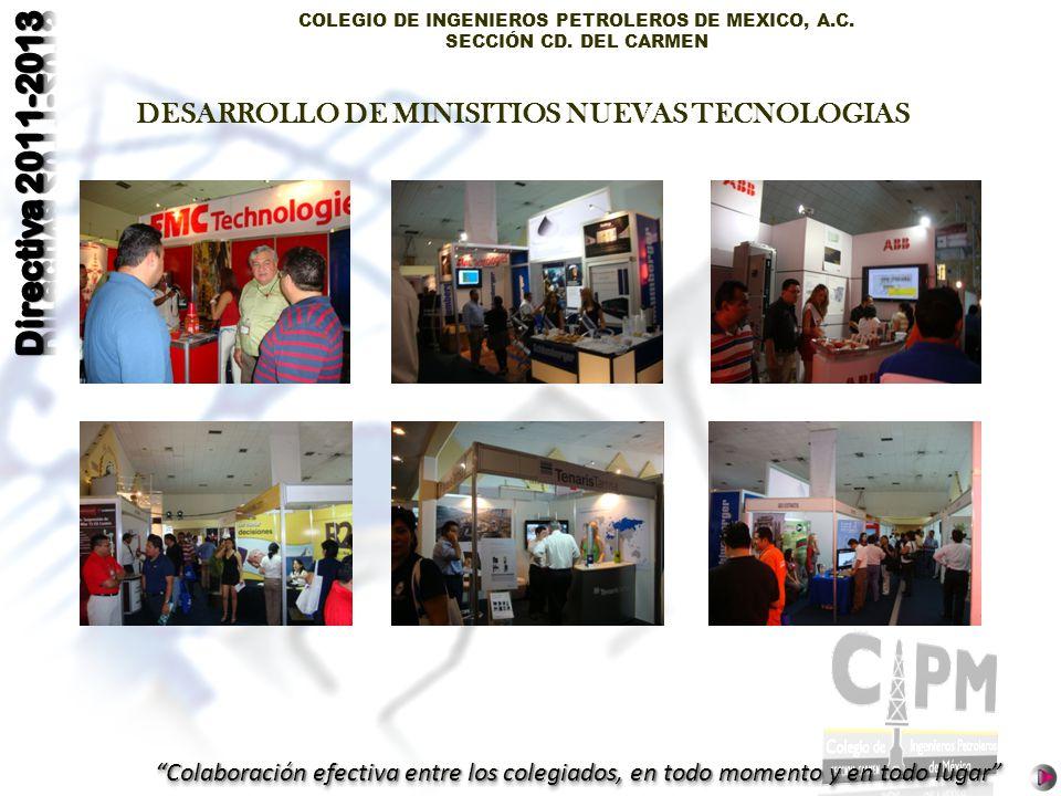 COLEGIO DE INGENIEROS PETROLEROS DE MEXICO, A.C. SECCIÓN CD. DEL CARMEN Colaboración efectiva entre los colegiados, en todo momento y en todo lugar DE