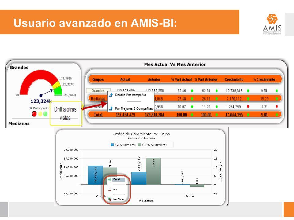 Usuario avanzado en AMIS-BI: