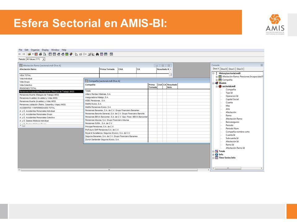 Esfera Sectorial en AMIS-BI: