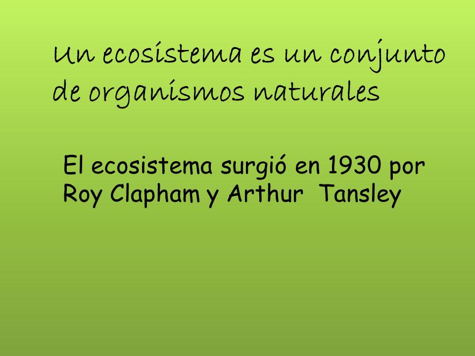 ECOSISTEMA ACUATICO Y MARINO Cuerpos de agua dulces & saladas