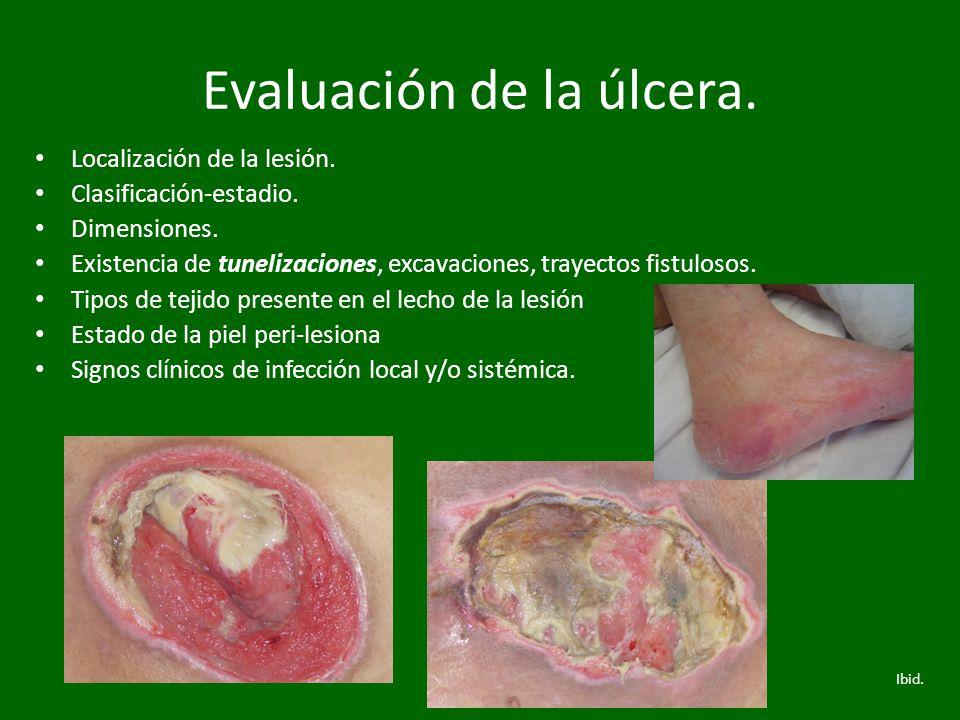 Evaluación de la úlcera. Localización de la lesión. Clasificación-estadio. Dimensiones. Existencia de tunelizaciones, excavaciones, trayectos fistulos