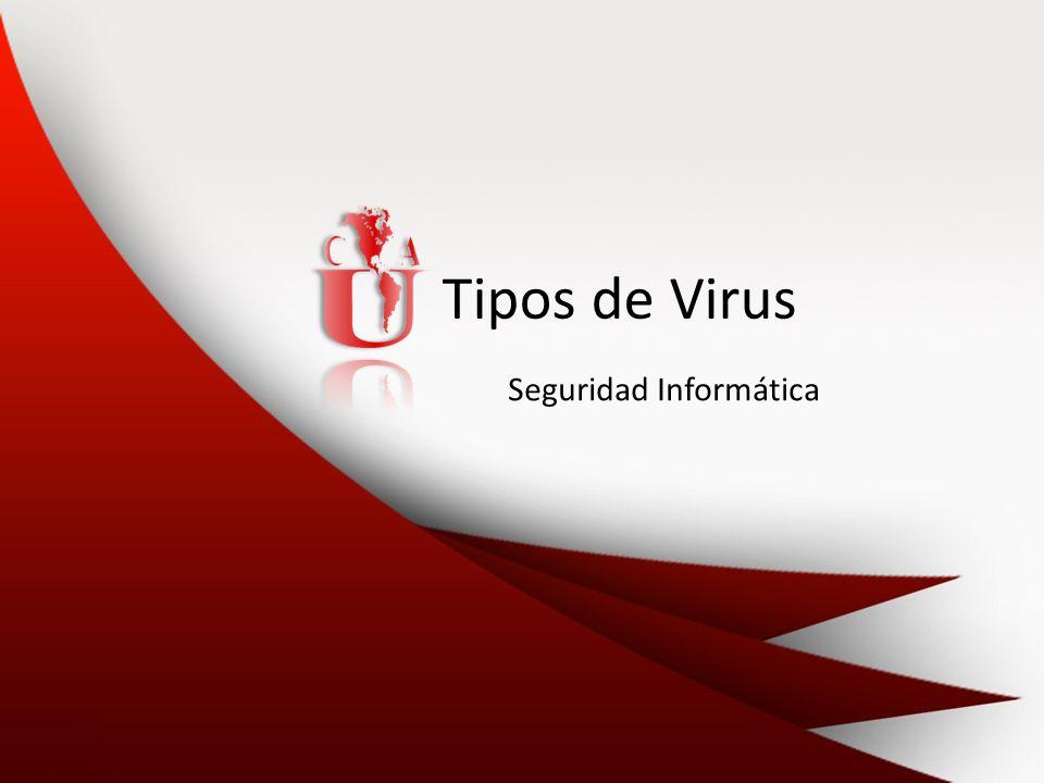 Tipos de Virus Seguridad Informática