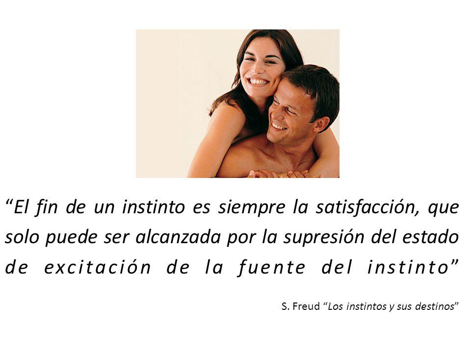 El fin de un instinto es siempre la satisfacción, que solo puede ser alcanzada por la supresión del estado de excitación de la fuente del instinto S.