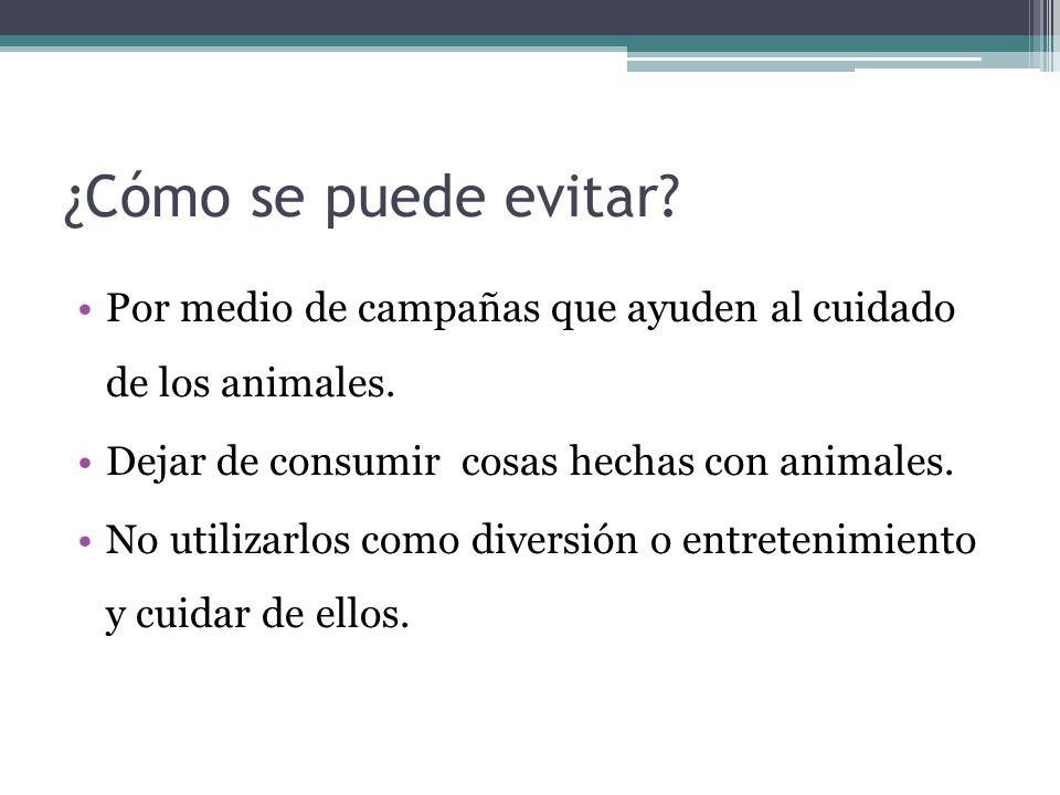 ¿Cómo se puede evitar? Por medio de campañas que ayuden al cuidado de los animales. Dejar de consumir cosas hechas con animales. No utilizarlos como d