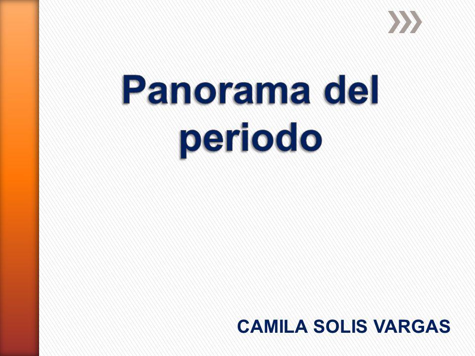 CAMILA SOLIS VARGAS