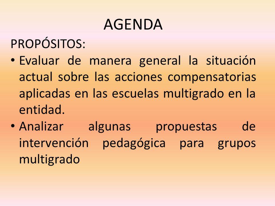 AGENDA PROPÓSITOS: Evaluar de manera general la situación actual sobre las acciones compensatorias aplicadas en las escuelas multigrado en la entidad.