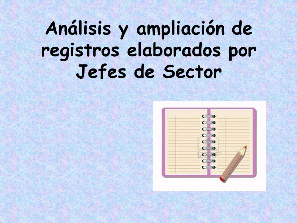 Análisis y ampliación de registros elaborados por Jefes de Sector