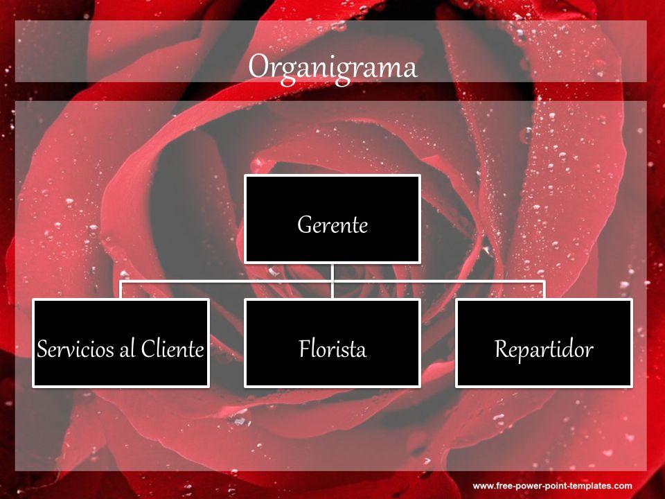 Organigrama Gerente Servicios al ClienteFloristaRepartidor