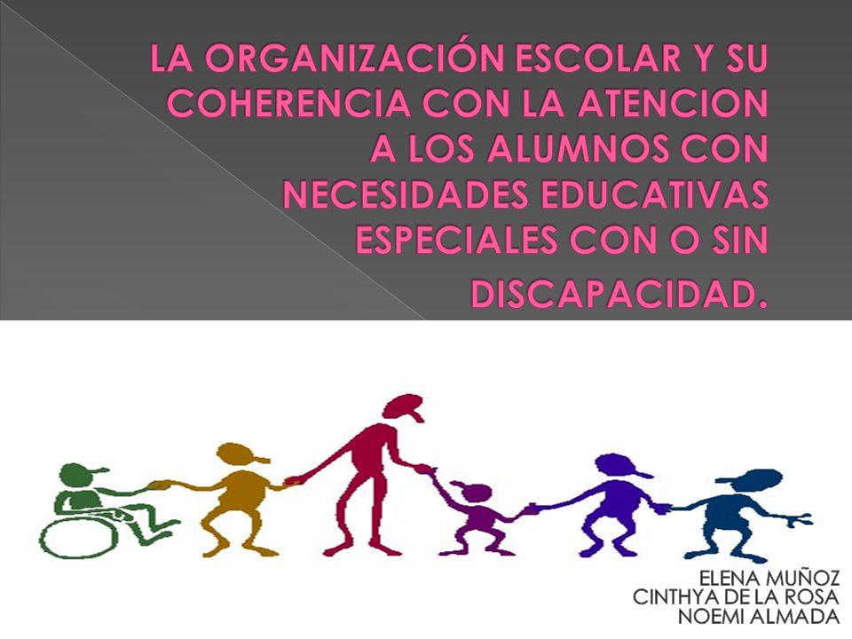 La escolarización Las garantías de la calidad de la enseñanza El proyecto curricular y las adaptaciones curriculares Los recursos, medios y apoyos complementar ios