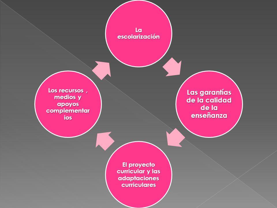 La escolarización Las garantías de la calidad de la enseñanza El proyecto curricular y las adaptaciones curriculares Los recursos, medios y apoyos com
