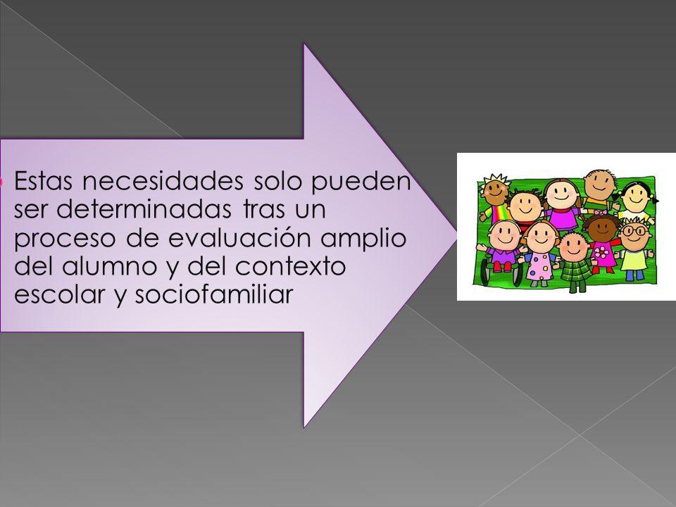 Estas necesidades solo pueden ser determinadas tras un proceso de evaluación amplio del alumno y del contexto escolar y sociofamiliar