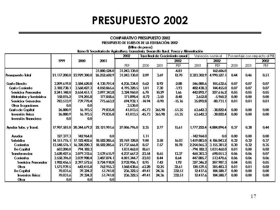 17 PRESUPUESTO 2002