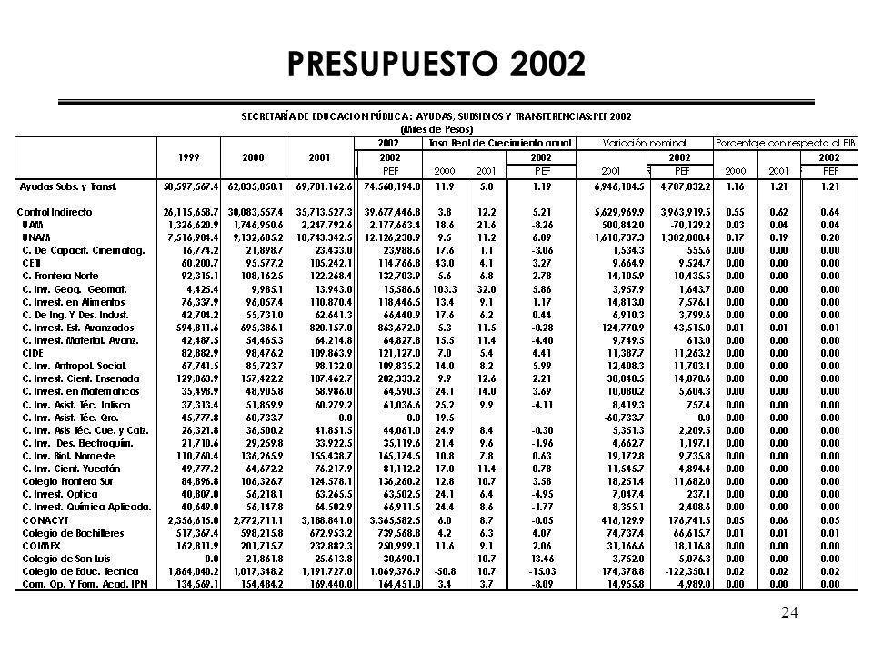 24 PRESUPUESTO 2002