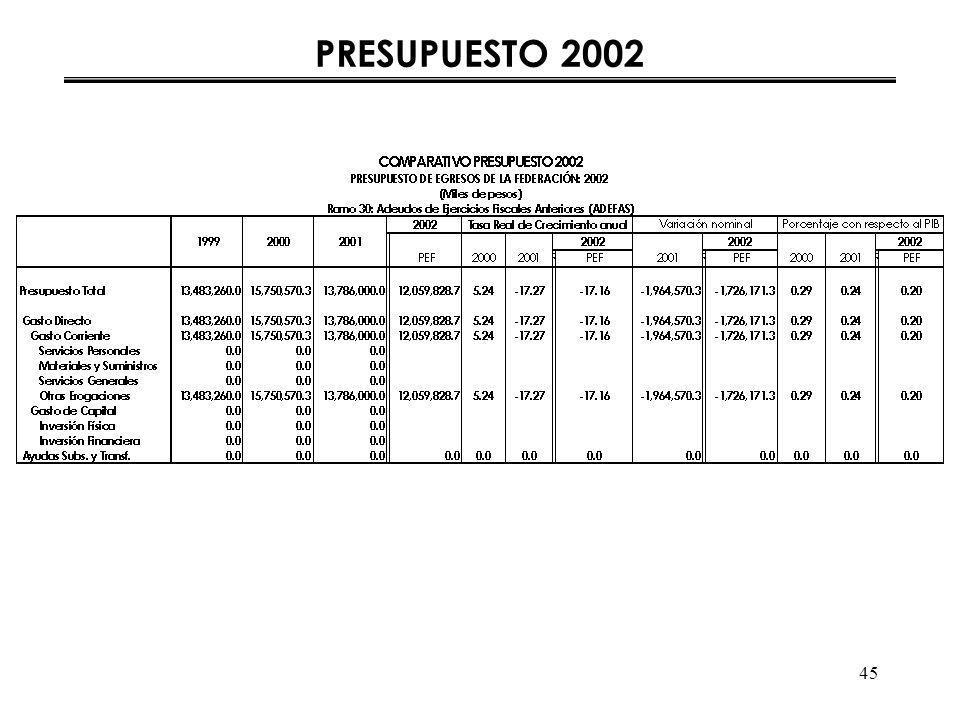 45 PRESUPUESTO 2002
