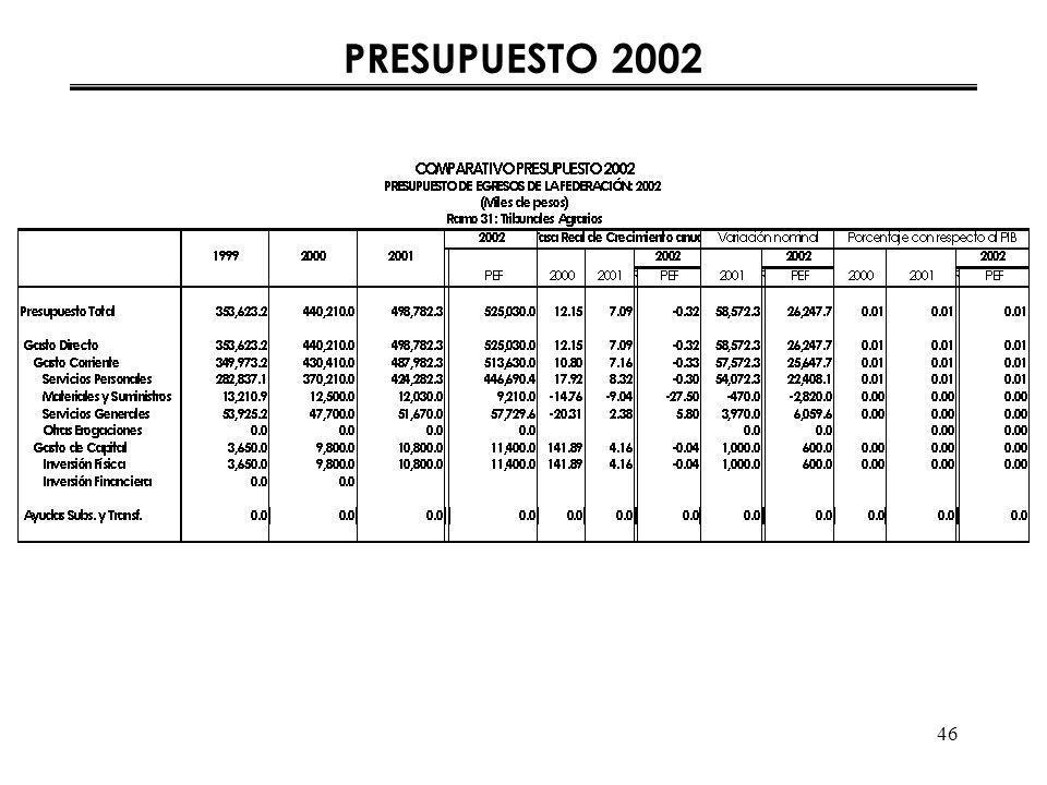 46 PRESUPUESTO 2002