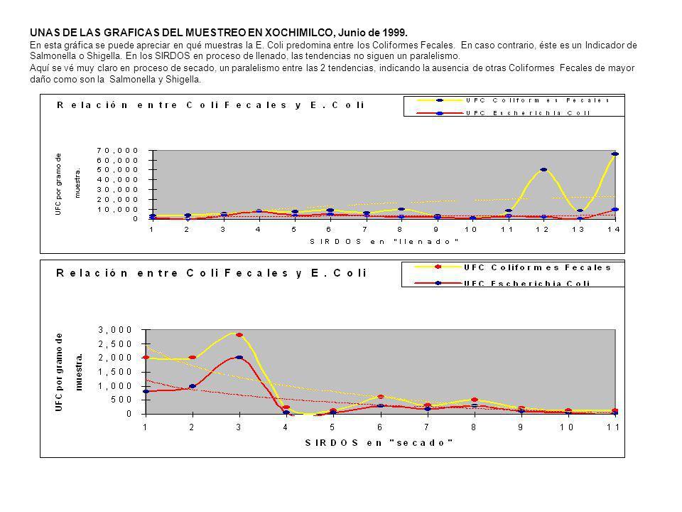UNAS DE LAS GRAFICAS DEL MUESTREO EN XOCHIMILCO, Junio de 1999. En esta gráfica se puede apreciar en qué muestras la E. Coli predomina entre los Colif
