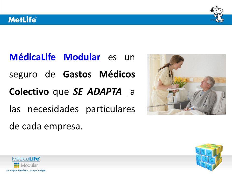 MédicaLife Modular es un seguro de Gastos Médicos Colectivo que SE ADAPTA a las necesidades particulares de cada empresa.