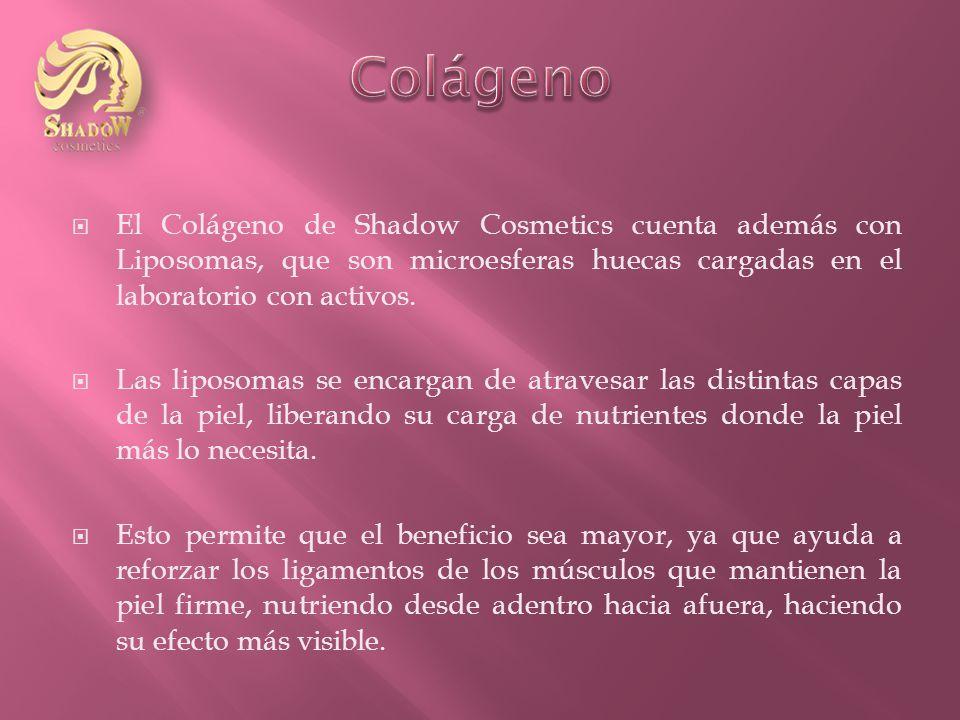 El Colágeno de Shadow Cosmetics cuenta además con Liposomas, que son microesferas huecas cargadas en el laboratorio con activos.
