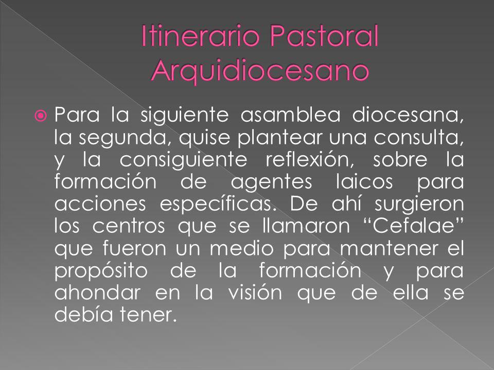 Medios de Evangelización: Impulsar procesos catecumenales comunitarios y juveniles Proceso catecumenal con sentido misionero Toda la Arquidiócesis a considerarnos en Misión Permanente.
