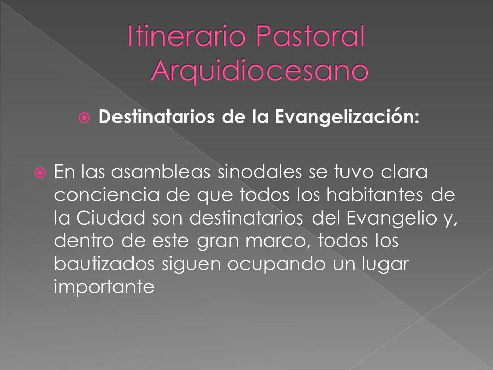 Se han anexado a estas Orientaciones los dos cronogramas estudiados en la pasada Asamblea Diocesana para que conozcan cómo están programadas las etapas y participen activamente.