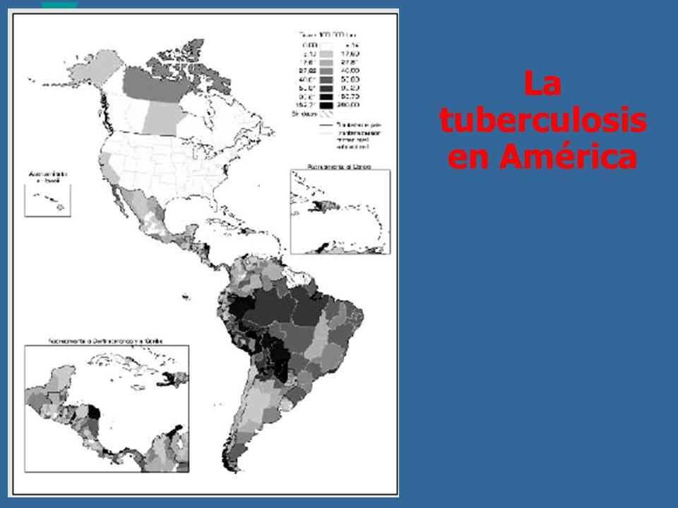 La tuberculosis en América