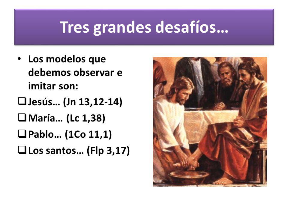 El ministerio de la catequesis, como toda la tarea de la evangelización, atraviesa hoy por un momento especialmente complejo.