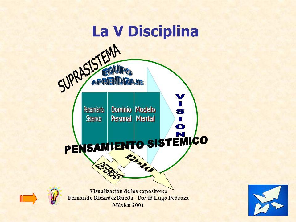 La V Disciplina Visualización de los expositores Fernando Ricàrdez Rueda - David Lugo Pedroza México 2001