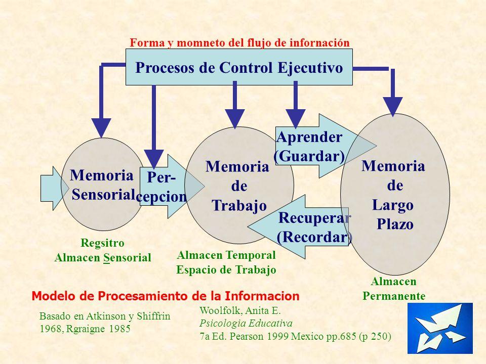 Memoria Sensorial Per- cepcion Memoria de Trabajo Aprender (Guardar) Recuperar (Recordar) Memoria de Largo Plazo Regsitro Almacen Sensorial Almacen Te