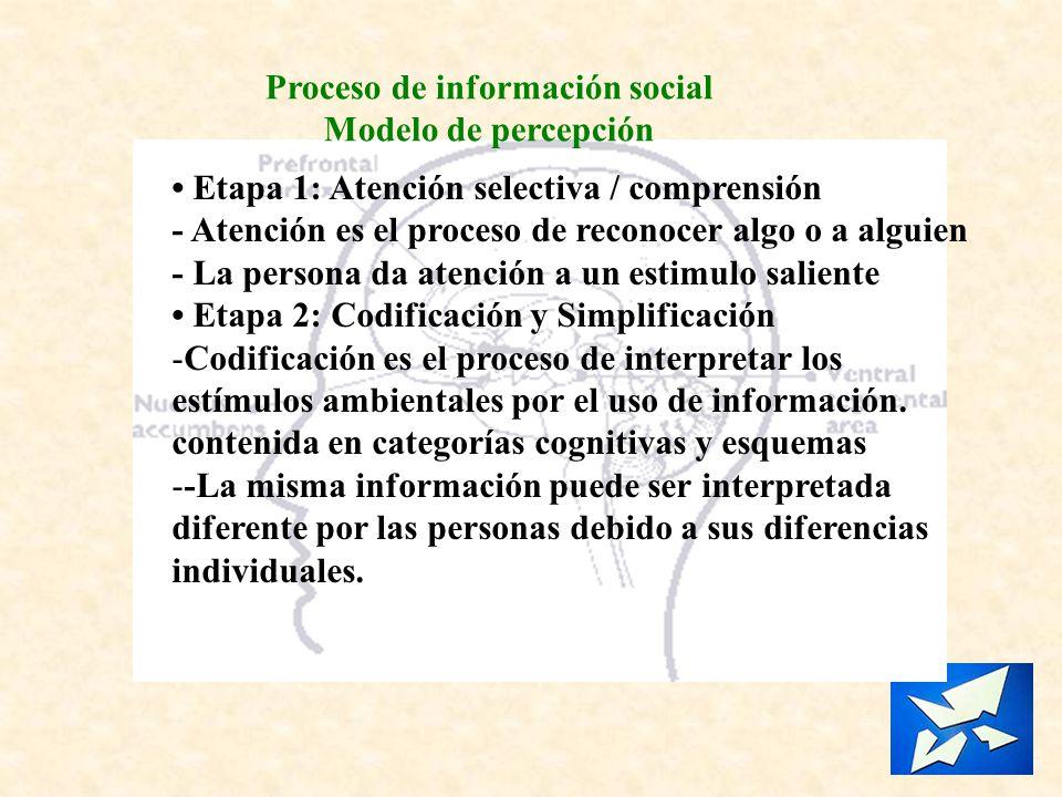Proceso de información social Modelo de percepción Etapa 1: Atención selectiva / comprensión - Atención es el proceso de reconocer algo o a alguien -
