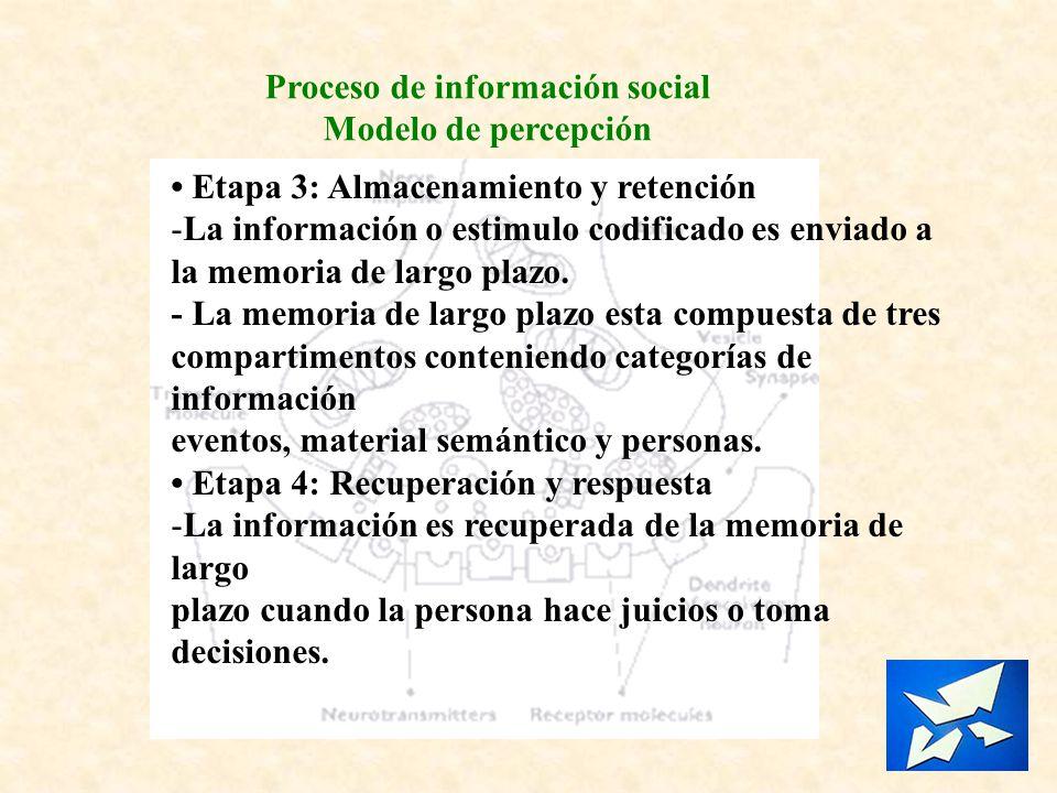 Proceso de información social Modelo de percepción Etapa 3: Almacenamiento y retención -La información o estimulo codificado es enviado a la memoria d