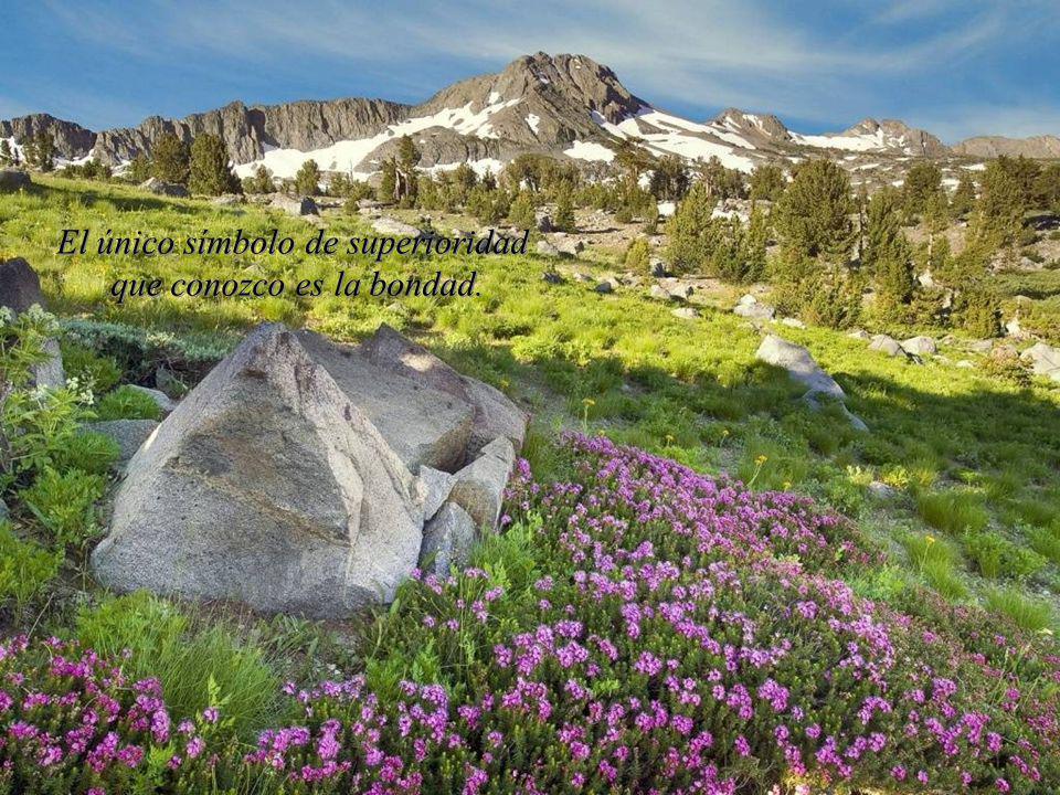El sabio no se sienta para lamentarse, sino que se pone alegremente a su tarea de reparar el daño hecho. El sabio no se sienta para lamentarse, sino q