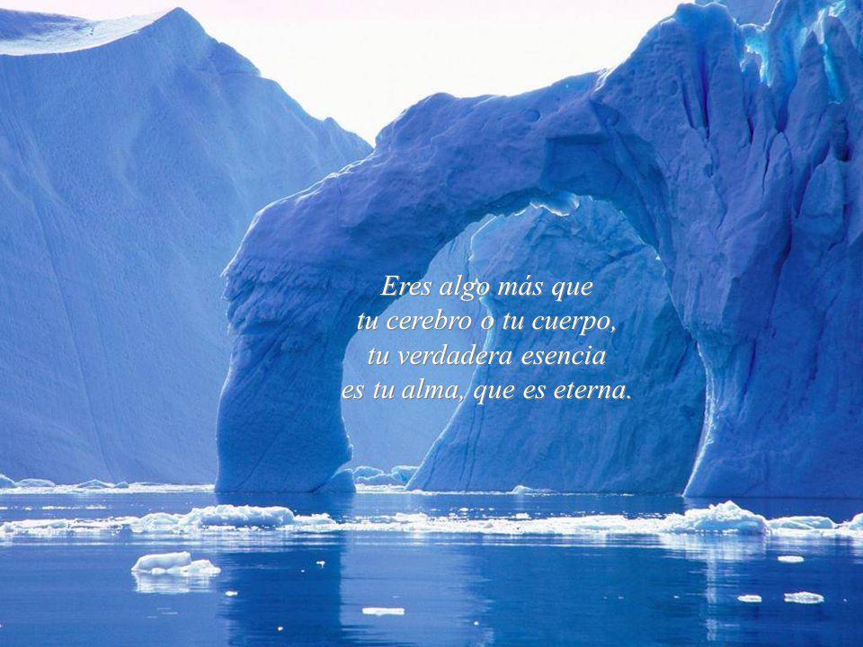 La felicidad es interior, no exterior; por lo tanto, no depende de lo que tenemos, sino de lo que somos. La felicidad es interior, no exterior; por lo