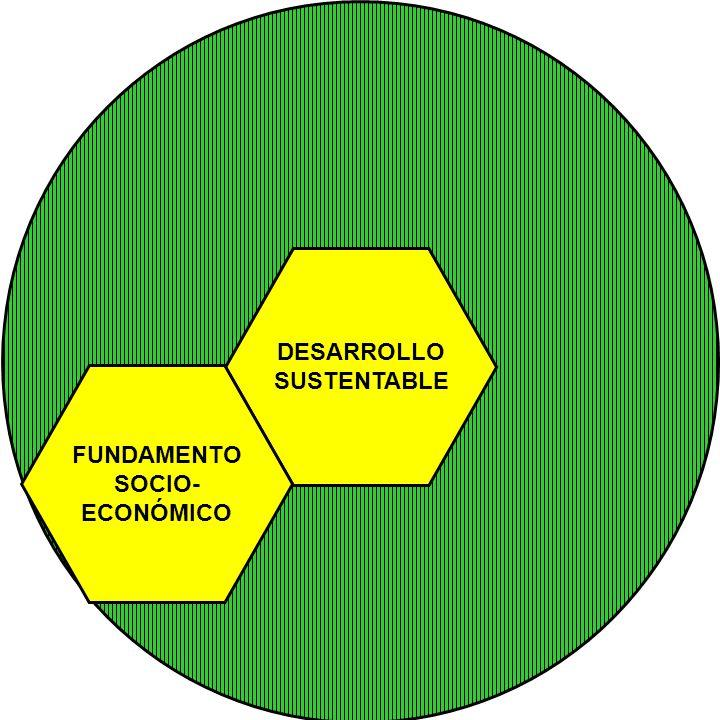 DESARROLLO SUSTENTABLE FUNDAMENTO SOCIO- ECONÓMICO
