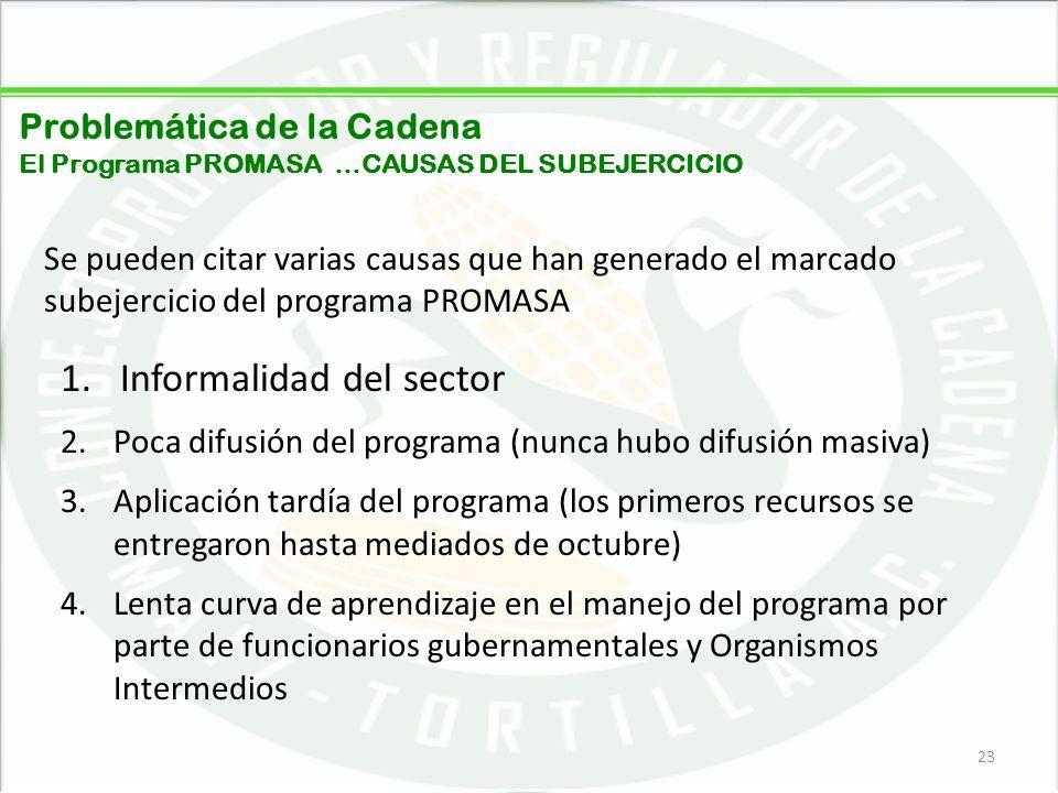 05/06/201423 Problemática de la Cadena El Programa PROMASA …CAUSAS DEL SUBEJERCICIO Se pueden citar varias causas que han generado el marcado subejerc