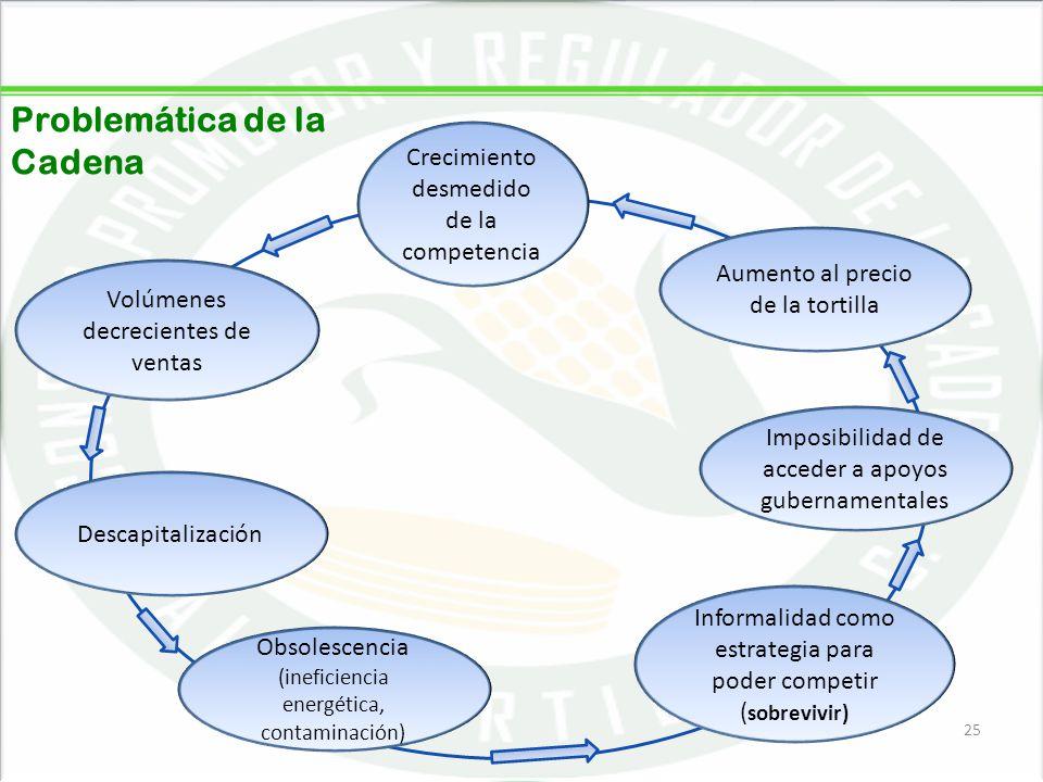 05/06/201425 Crecimiento desmedido de la competencia Volúmenes decrecientes de ventas Descapitalización Obsolescencia (ineficiencia energética, contam