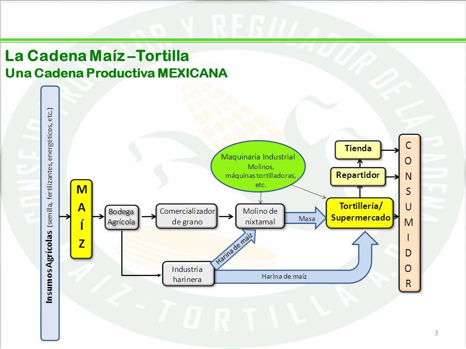 05/06/201414 Tendencias de Consumo de la Tortilla de Maíz ¿Siempre ha comido la misma cantidad de tortillas o ha aumentado o disminuido su consumo.