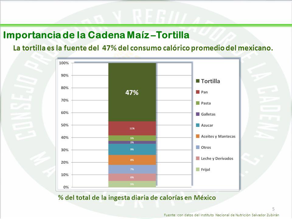05/06/20145 Importancia de la Cadena Maíz –Tortilla 5 La tortilla es la fuente del 47% del consumo calórico promedio del mexicano. % del total de la i