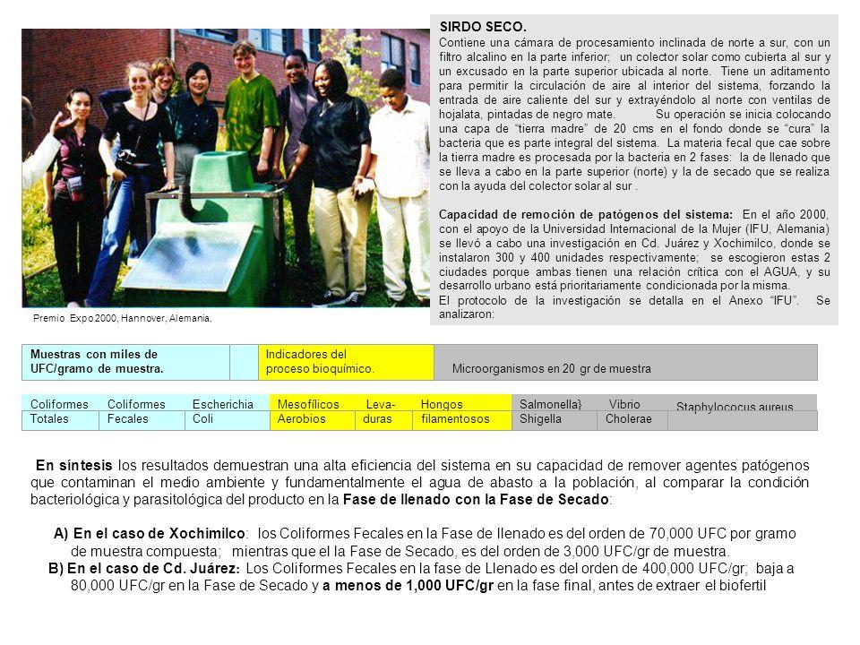 ALGUNOS DE LOS INTEGRANTES DEL TALLER DE DISEÑO Y MANUFACTURA DEL GRUPO DE TECNOLOGIA ALTERNATIVA S.C.