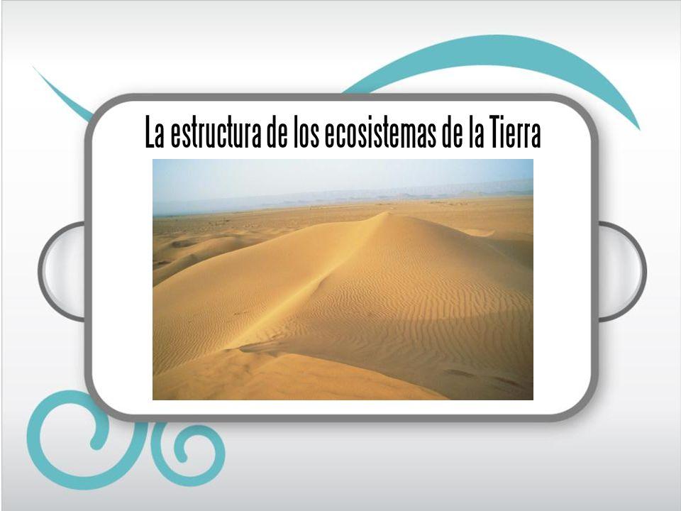 Lectura inicial En el invierno de 2005, unos científicos españoles que estudiaban las aves migratorias en Mauritania, oyeron hablar de una charca en la que vivían cocodrilos.