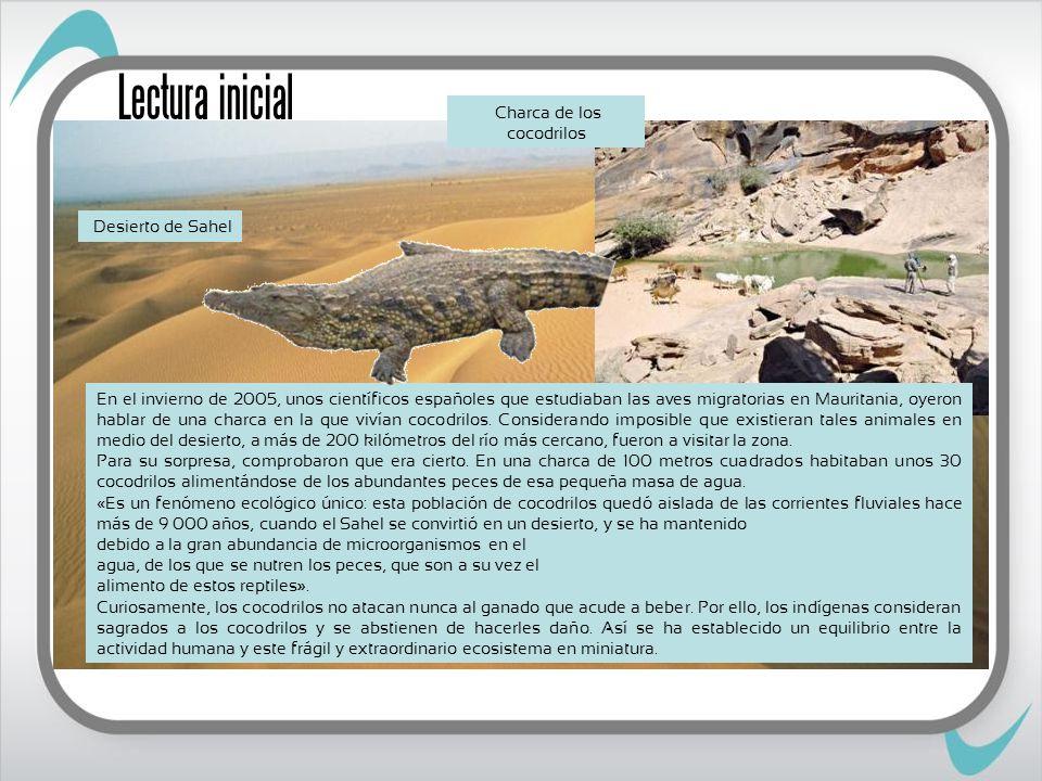 Adaptaciones a ecosistemas terrestres Hojas grandes Espinas Temperatura Luz Humedad Adaptaciones de los seres vivos Factor abiótico Estomas Escamas Sustancias Exoesqueleto Altura Actividad nocturna Homeotermos Poiquilotermos