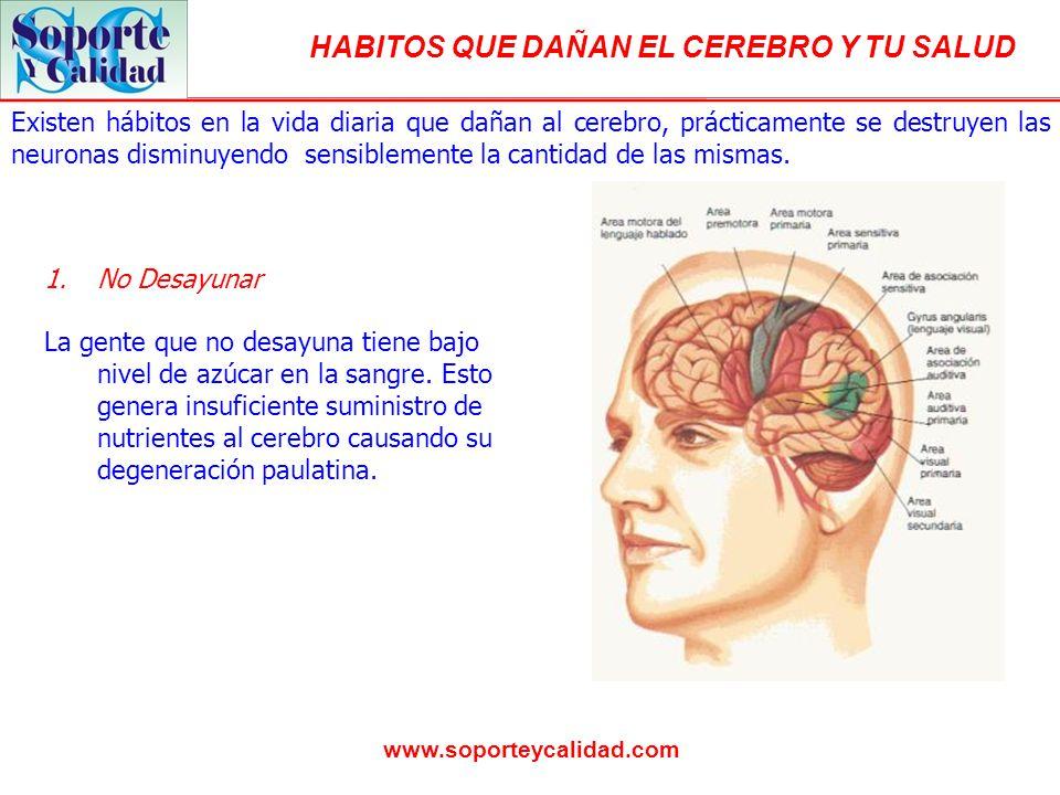 HABITOS QUE DAÑAN EL CEREBRO Y TU SALUD www.soporteycalidad.com Existen hábitos en la vida diaria que dañan al cerebro, prácticamente se destruyen las neuronas disminuyendo sensiblemente la cantidad de las mismas.