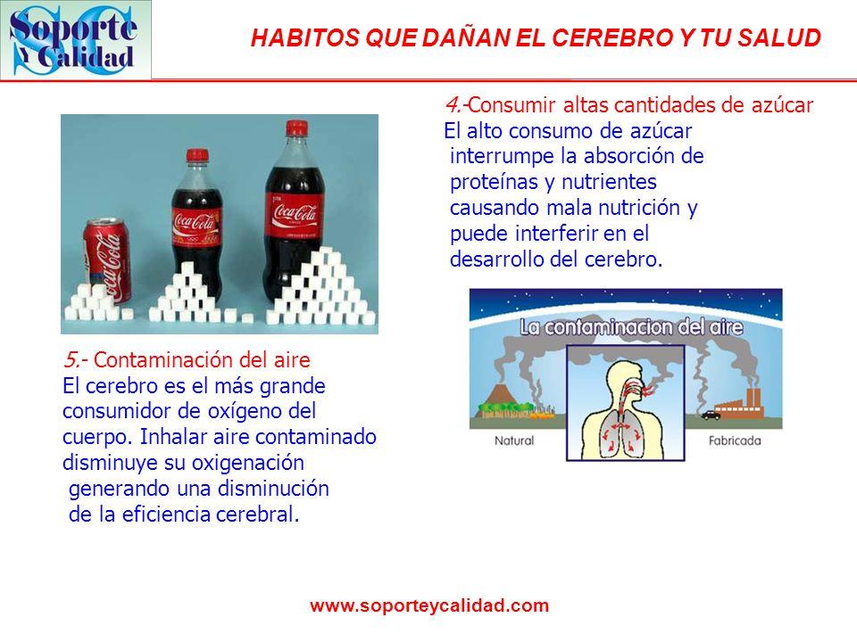 HABITOS QUE DAÑAN EL CEREBRO Y TU SALUD www.soporteycalidad.com 4.-Consumir altas cantidades de azúcar El alto consumo de azúcar interrumpe la absorción de proteínas y nutrientes causando mala nutrición y puede interferir en el desarrollo del cerebro.