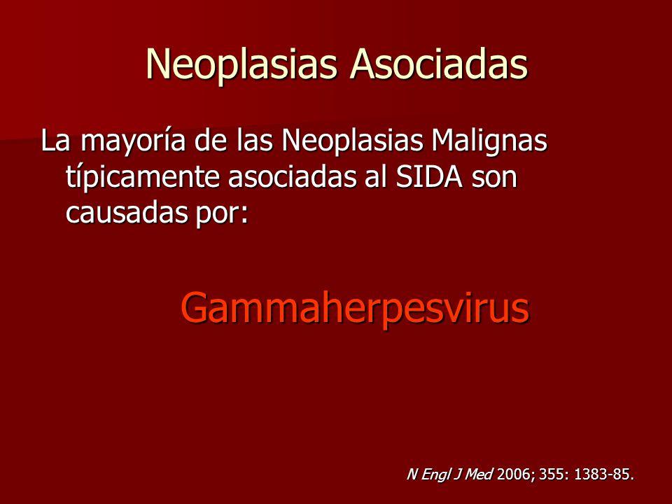 Neoplasias Asociadas La mayoría de las Neoplasias Malignas típicamente asociadas al SIDA son causadas por: Gammaherpesvirus Gammaherpesvirus N Engl J