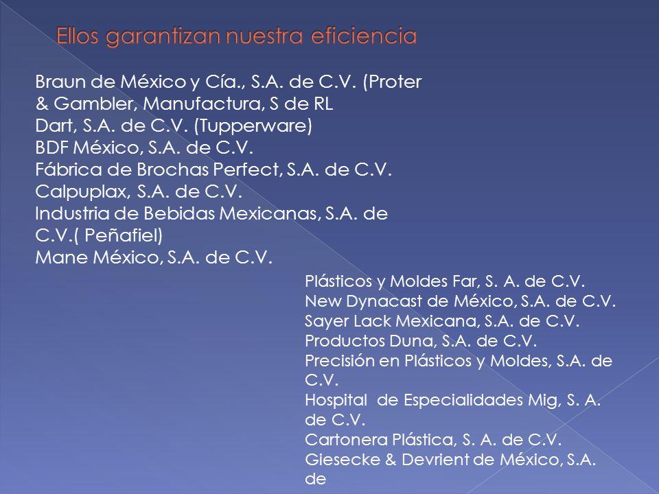 Braun de México y Cía., S.A. de C.V. (Proter & Gambler, Manufactura, S de RL Dart, S.A. de C.V. (Tupperware) BDF México, S.A. de C.V. Fábrica de Broch