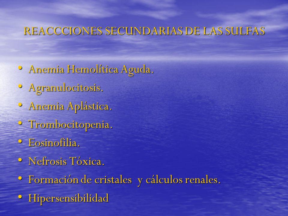 REACCCIONES SECUNDARIAS DE LAS SULFAS Anemia Hemolítica Aguda. Anemia Hemolítica Aguda. Agranulocitosis. Agranulocitosis. Anemia Aplástica. Anemia Apl