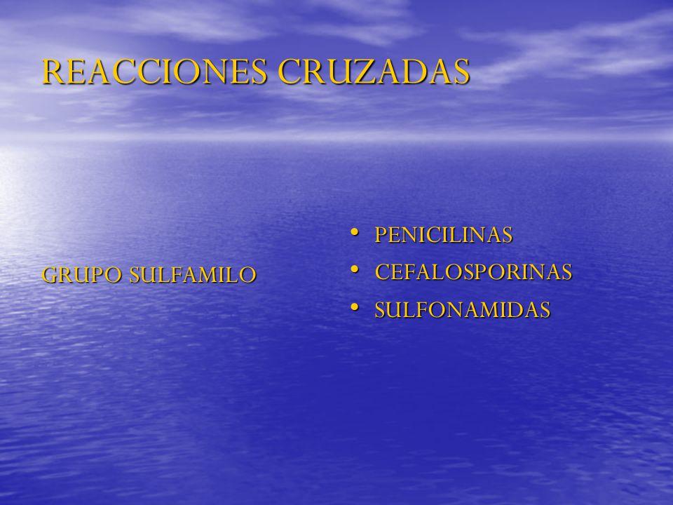 REACCIONES CRUZADAS GRUPO SULFAMILO PENICILINAS PENICILINAS CEFALOSPORINAS CEFALOSPORINAS SULFONAMIDAS SULFONAMIDAS