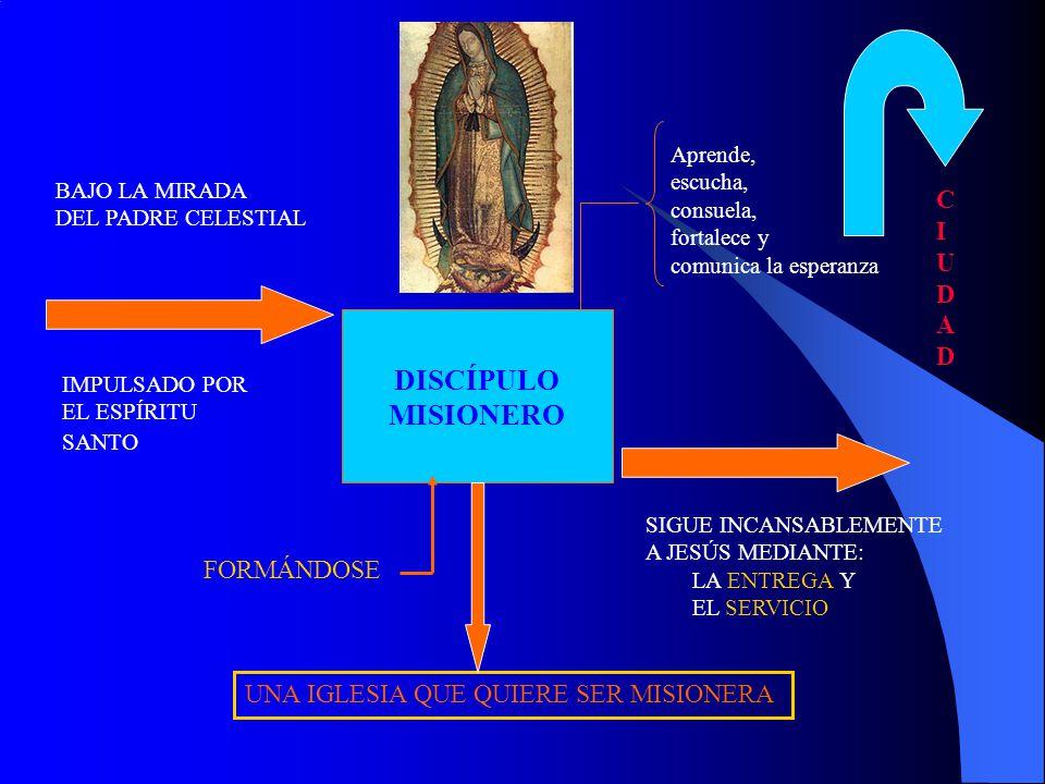 DISCÍPULO MISIONERO IMPULSADO POR EL ESPÍRITU SANTO SIGUE INCANSABLEMENTE A JESÚS MEDIANTE: LA ENTREGA Y EL SERVICIO BAJO LA MIRADA DEL PADRE CELESTIA